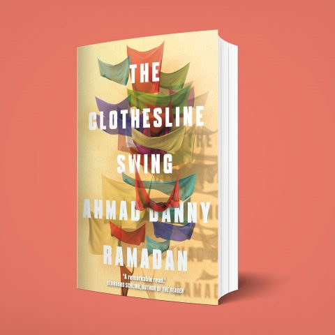 Clothesline Swing Cover