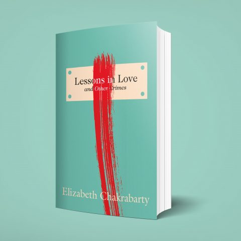 Lessons In Love Book